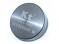 YKT-1W0 Hybrid Tantalum Capacitors Radial lead Heteropolarity screws