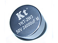 YKT-2W3 Hybrid Tantalum Capacitors Radial lead Heteropolarity 3 screws